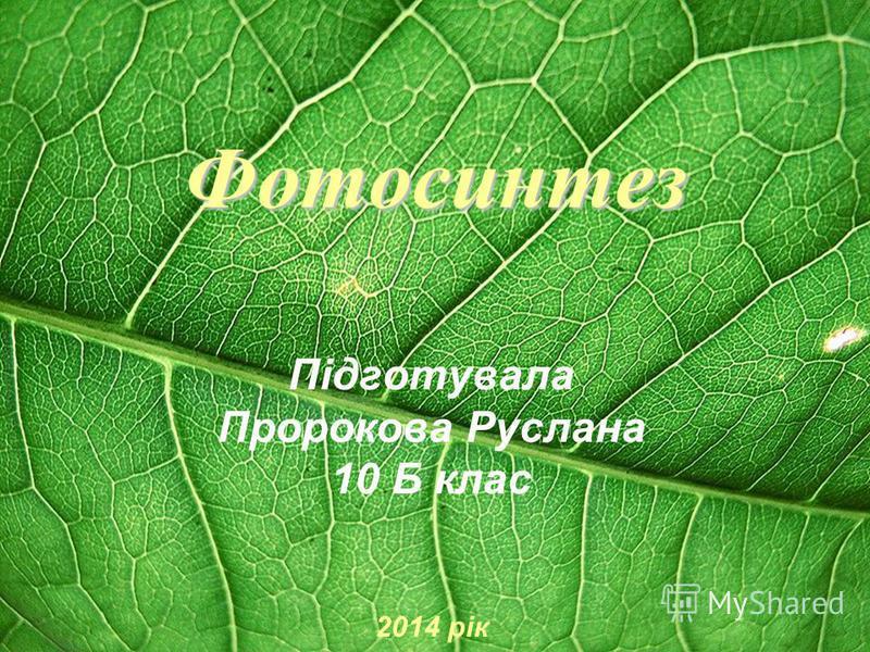 Фотосинтез Підготувала Пророкова Руслана 10 Б клас 2014 рік