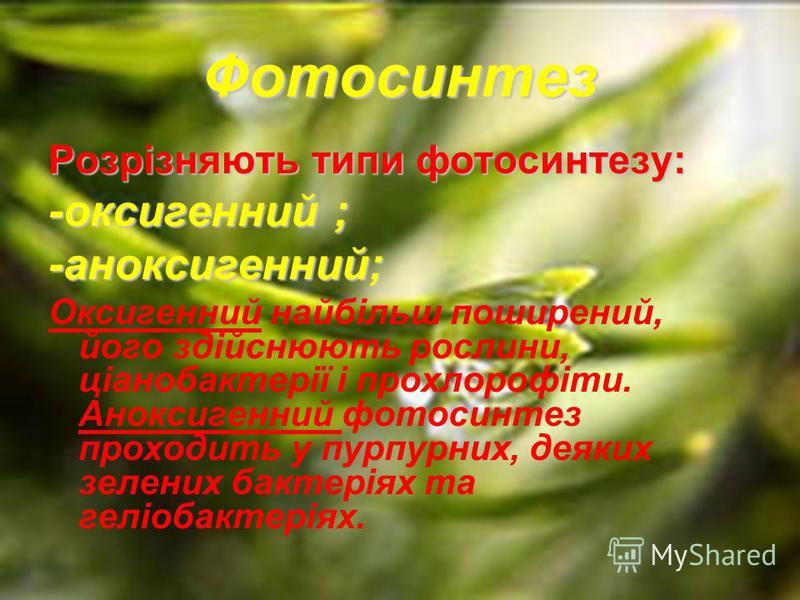 Фотосинтез Розрізняють типи фотосинтезу: -оксигенний ; -аноксигенний; Оксигенний найбільш поширений, його здійснюють рослини, ціанобактерії і прохлорофіти. Аноксигенний фотосинтез проходить у пурпурних, деяких зелених бактеріях та геліобактеріях.