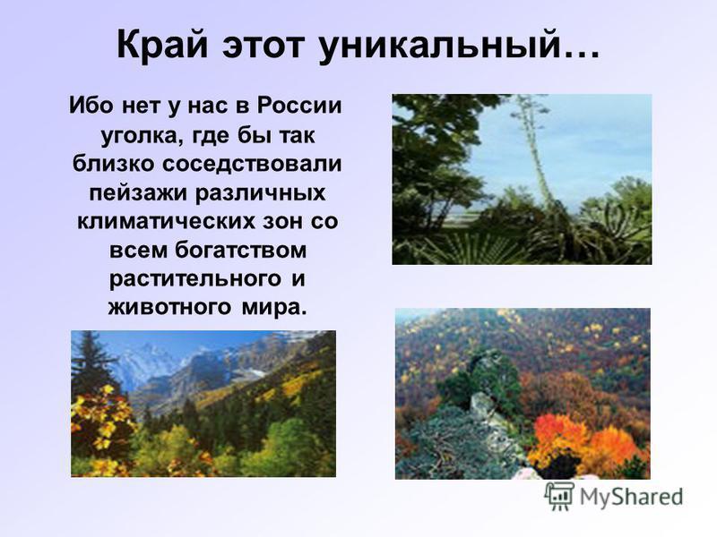 Край этот уникальный… Ибо нет у нас в России уголка, где бы так близко соседствовали пейзажи различных климатических зон со всем богатством растительного и животного мира.