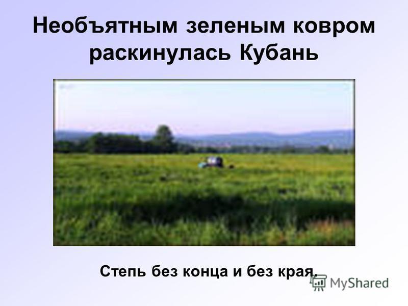 Необъятным зеленым ковром раскинулась Кубань Степь без конца и без края.