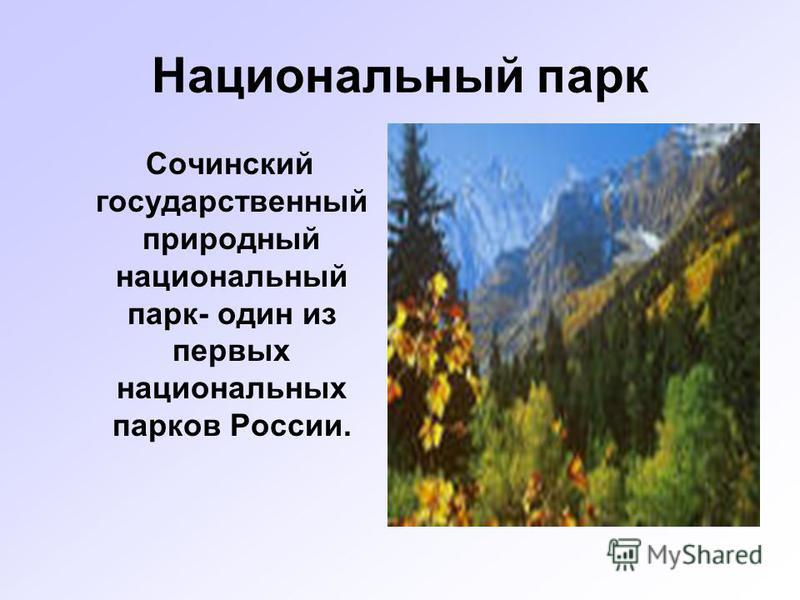 Национальный парк Сочинский государственный природный национальный парк- один из первых национальных парков России.