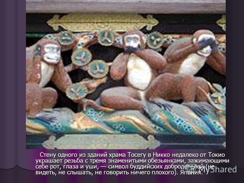 Стену одного из зданий храма Тосегу в Никко недалеко от Токио украшает резьба с тремя знаменитыми обезьянками, зажимающими себе рот, глаза и уши, символ буддийских добродетелей (не видеть, не слышать, не говорить ничего плохого). Япония. Стену одного