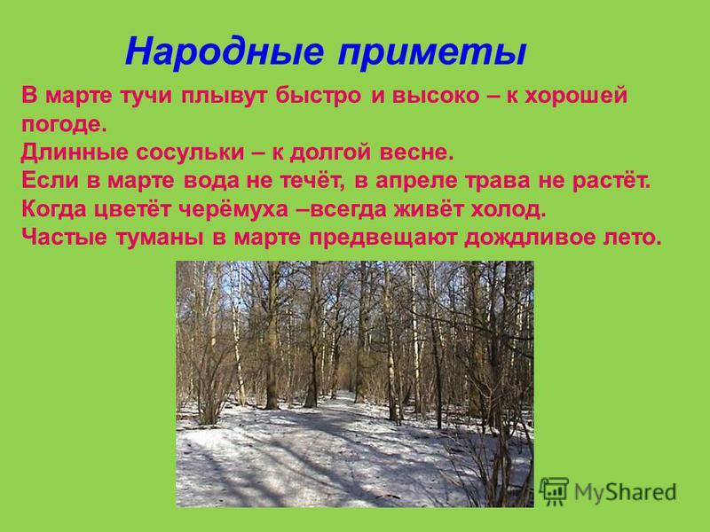 А сколько птиц в лесу и в полях! И для каждой из них Весна – красна придумала важное дело.