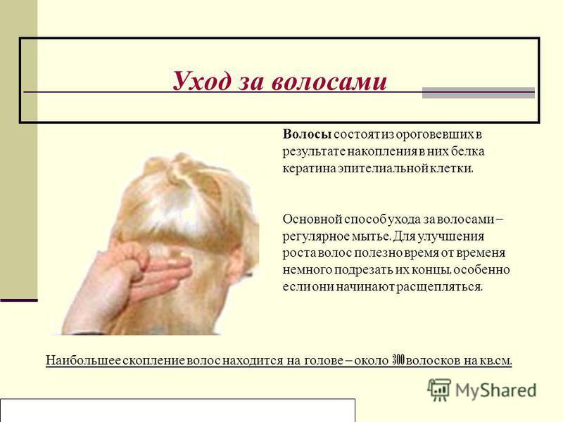 Образовательный центр «Нива» Мельникова Ольга Уход за волосами Волосы состоят из ороговевших в результате накопления в них белка кератина эпителиальной клетки. Основной способ ухода за волосами – регулярное мытье. Для улучшения роста волос полезно вр