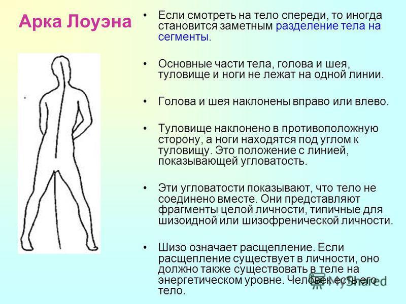 Арка Лоуэна Если смотреть на тело спереди, то иногда становится заметным разделение тела на сегменты. Основные части тела, голова и шея, туловище и ноги не лежат на одной линии. Голова и шея наклонены вправо или влево. Туловище наклонено в противопол