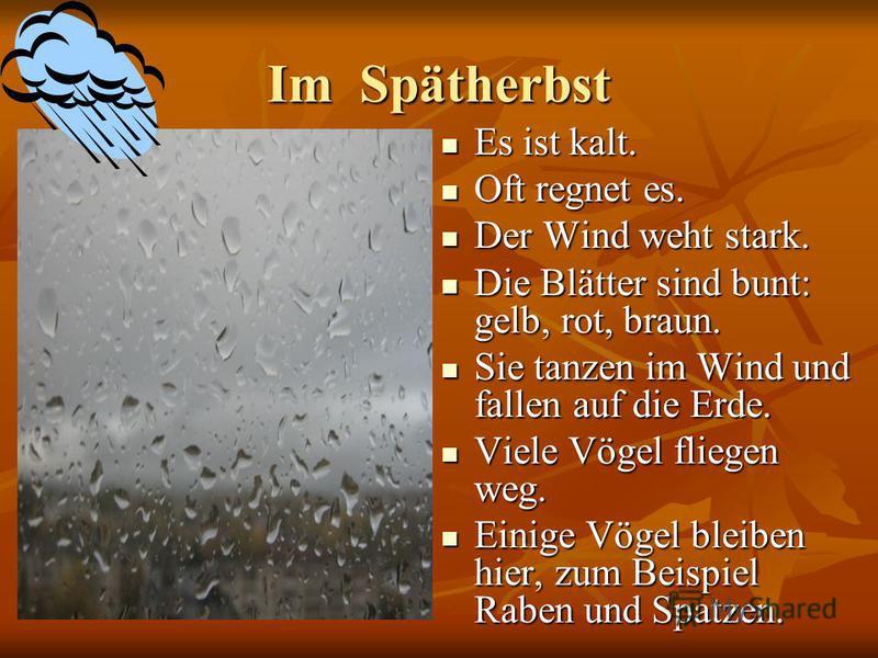 Im Spätherbst Es ist kalt. Es ist kalt. Oft regnet es. Oft regnet es. Der Wind weht stark. Der Wind weht stark. Die Blätter sind bunt: gelb, rot, braun. Die Blätter sind bunt: gelb, rot, braun. Sie tanzen im Wind und fallen auf die Erde. Sie tanzen i