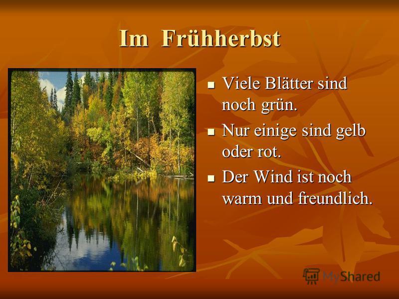 Im Frühherbst Viele Blätter sind noch grün. Viele Blätter sind noch grün. Nur einige sind gelb oder rot. Nur einige sind gelb oder rot. Der Wind ist noch warm und freundlich. Der Wind ist noch warm und freundlich.
