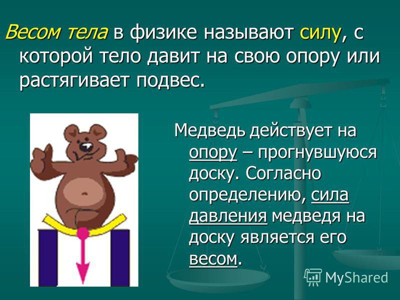 Весом тела в физике называют силу, с которой тело давит на свою опору или растягивает подвес. Медведь действует на опору – прогнувшуюся доску. Согласно определению, сила давления медведя на доску является его весом.