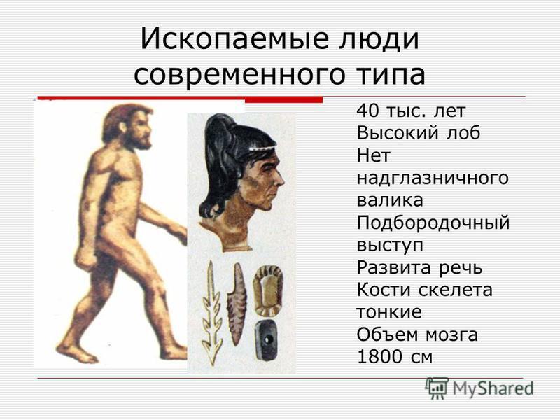 Первые люди современного типа - кроманьонцы первые находки скелетов людей этого типа сделаны в 1868 году (Франция, пещера Кро-Маньон); вторая экспансия людей с Африканского континента в Европу состоялась 60 – 50 тысяч лет назад; длительное время неан