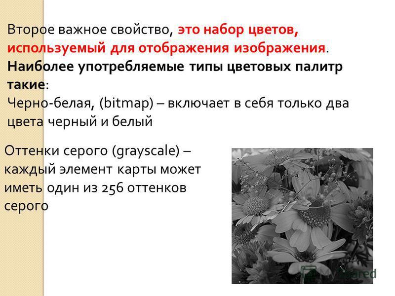Второе важное свойство, это набор цветов, используемый для отображения изображения. Наиболее употребляемые типы цветовых палитр такие: Черно-белая, (bitmap) – включает в себя только два цвета черный и белый Оттенки серого (grayscale) – каждый элемент