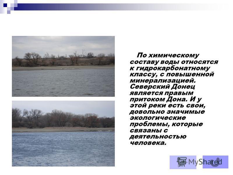 По химическому составу воды относятся к гидрокарбонатному классу, с повышенной минерализацией. Северский Донец является правым притоком Дона. И у этой реки есть свои, довольно значимые экологические проблемы, которые связаны с деятельностью человека.