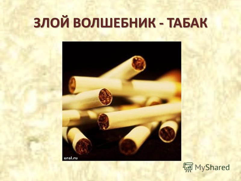 ЗЛОЙ ВОЛШЕБНИК - ТАБАК