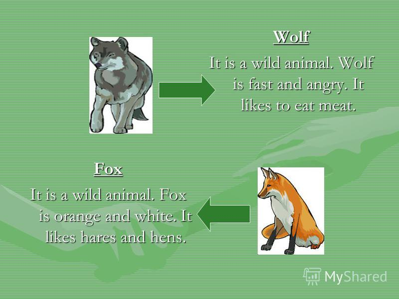 Wolf It is a wild animal. Wolf is fast and angry. It likes to eat meat. Fox It is a wild animal. Fox is orange and white. It likes hares and hens.