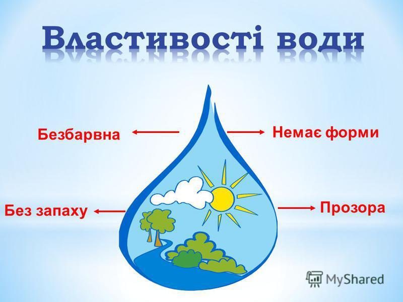 Вода є в рослинах, в організмах людини і тварин