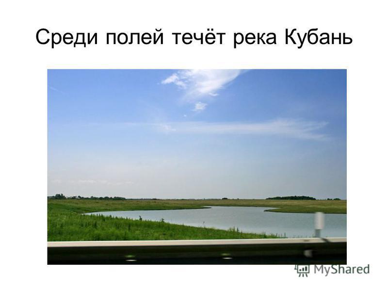 Среди полей течёт река Кубань