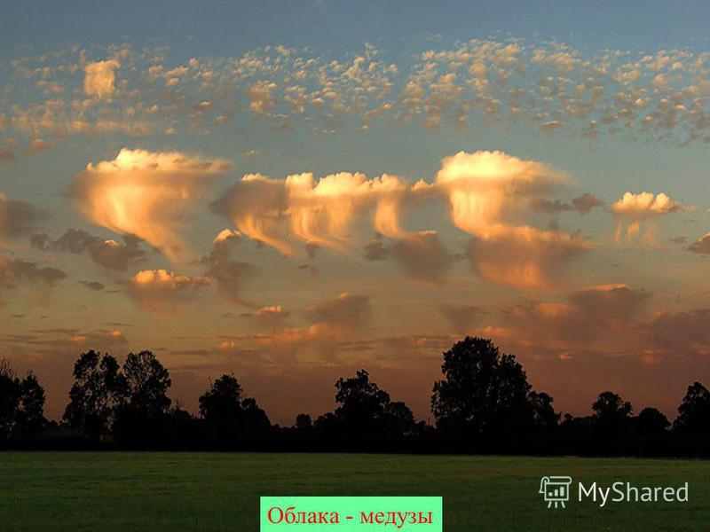 Облака - медузы