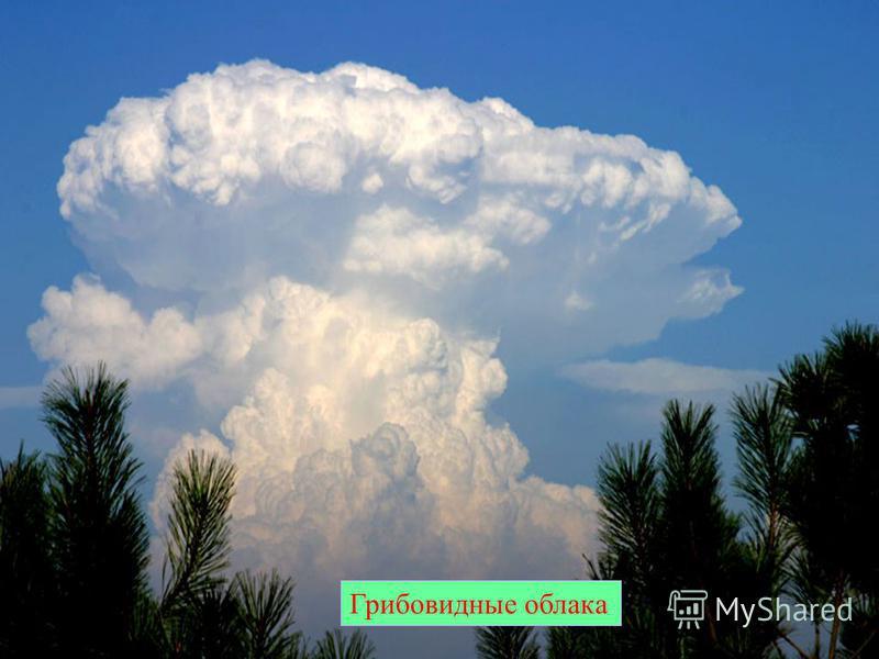 Грибовидные облака