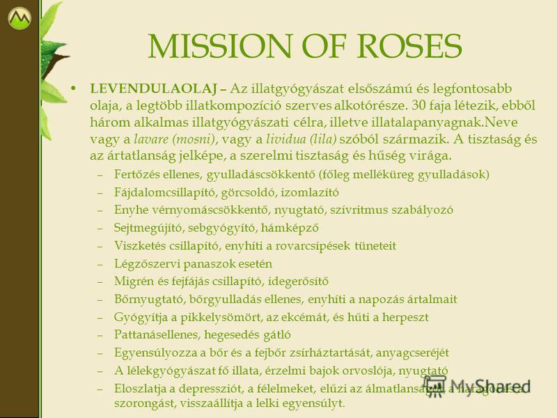 MISSION OF ROSES LEVENDULAOLAJ – Az illatgyógyászat elsőszámú és legfontosabb olaja, a legtöbb illatkompozíció szerves alkotórésze. 30 faja létezik, ebből három alkalmas illatgyógyászati célra, illetve illatalapanyagnak.Neve vagy a lavare (mosni), va