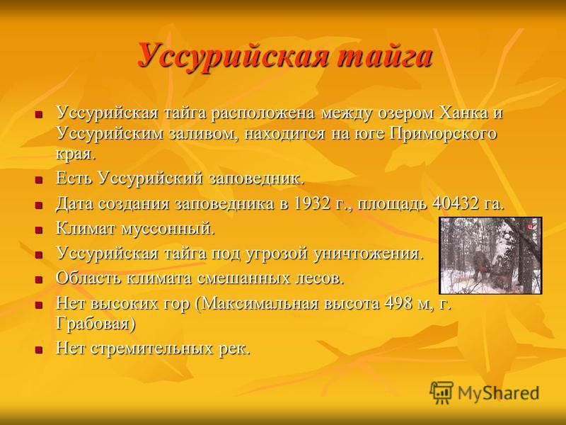 Уссурийская тайга Уссурийская тайга расположена между озером Ханка и Уссурийским заливом, находится на юге Приморского края. Уссурийская тайга расположена между озером Ханка и Уссурийским заливом, находится на юге Приморского края. Есть Уссурийский з