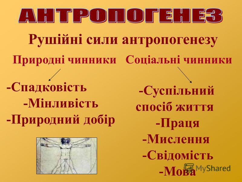 Рушійні сили антропогенезу Природні чинникиСоціальні чинники -Спадковість -Мінливість -Природний добір -Суспільний спосіб життя -Праця -Мислення -Свідомість -Мова