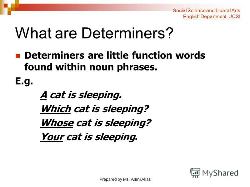 Prepared by Ms. Arlini Alias What are Determiners? Determiners are little function words found within noun phrases. E.g. A cat is sleeping. Which cat is sleeping? Whose cat is sleeping? Your cat is sleeping. Social Science and Liberal Arts English De