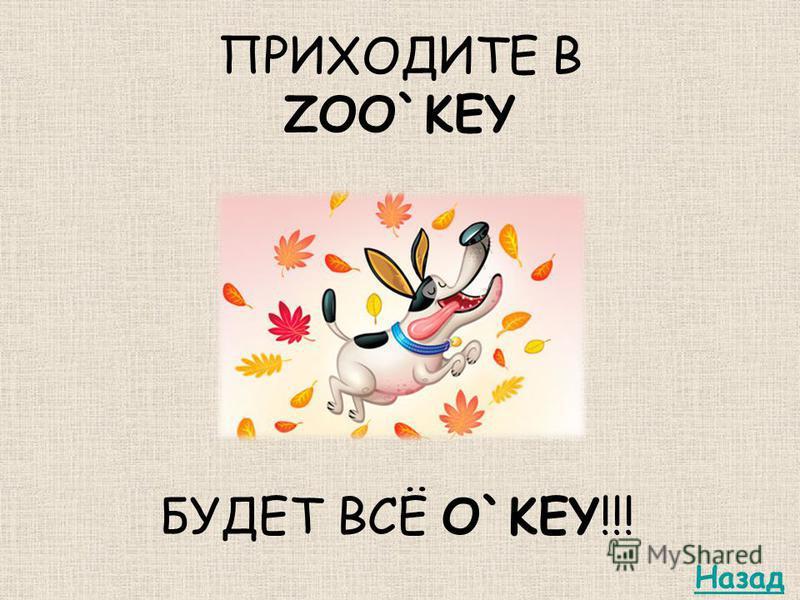 ПРИХОДИТЕ В ZOO`KEY БУДЕТ ВСЁ O`KEY!!! Назад