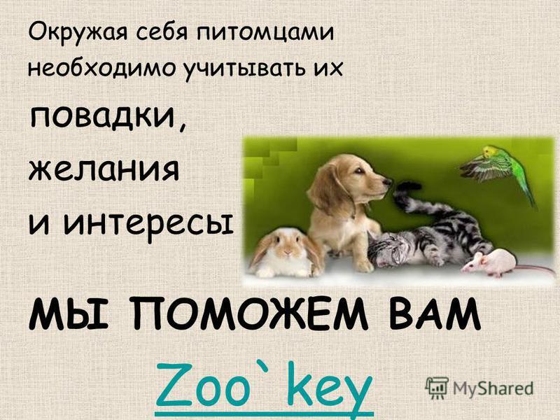 Окружая себя питомцами необходимо учитывать их повадки, желания и интересы МЫ ПОМОЖЕМ ВАМ Zoo`key