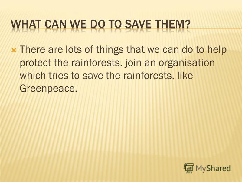 There are lots of things that we can do to help protect the rainforests. join an organisation which tries to save the rainforests, like Greenpeace.