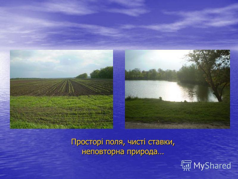 Просторі поля, чисті ставки, неповторна природа…