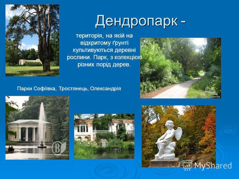Дендропарк - Парки Софіївка, Тростянець, Олександрія територія, на якій на відкритому ґрунті культивуються деревні рослини. Парк, з колекцією різних порід дерев.
