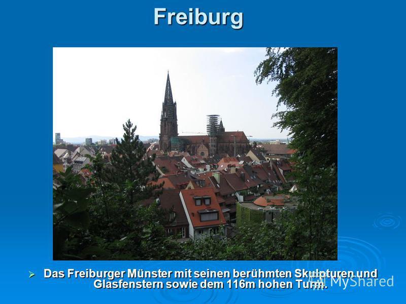 Freiburg Das Freiburger Münster mit seinen berühmten Skulpturen und Glasfenstern sowie dem 116m hohen Turm. Das Freiburger Münster mit seinen berühmten Skulpturen und Glasfenstern sowie dem 116m hohen Turm.