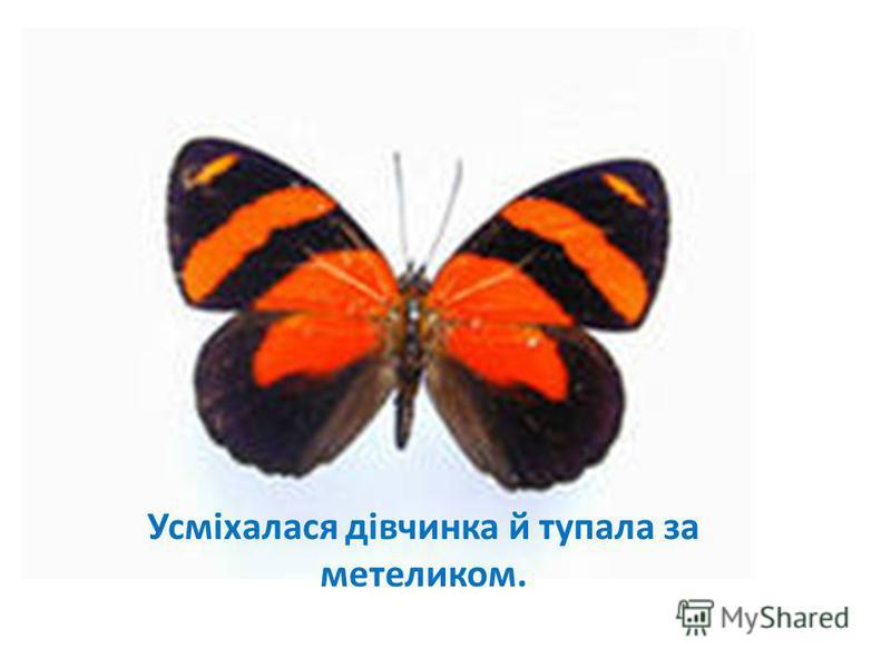 Усміхалася дівчинка й тупала за метеликом.