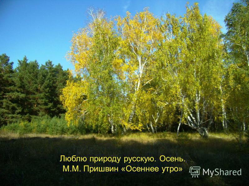 Люблю природу русскую. Осень. М.М. Пришвин «Осеннее утро»