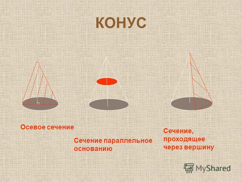 КОНУС Осевое сечение Сечение параллельное основанию Сечение, проходящее через вершину