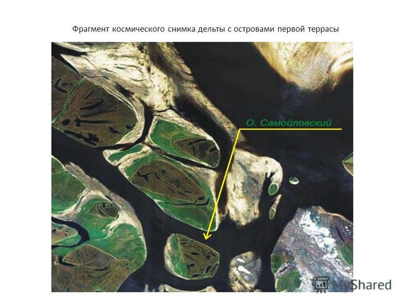 Фрагмент космического снимка дельты с островами первой террасы