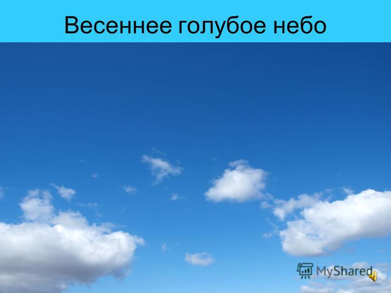 Весеннее голубое небо