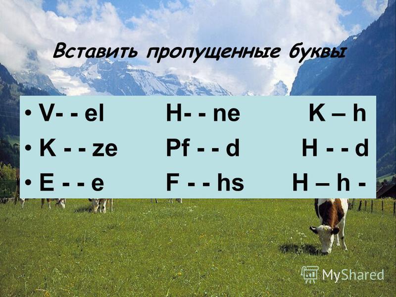 Вставить пропущенные буквы V- - el H- - ne K – h K - - ze Pf - - d H - - d E - - e F - - hs H – h -