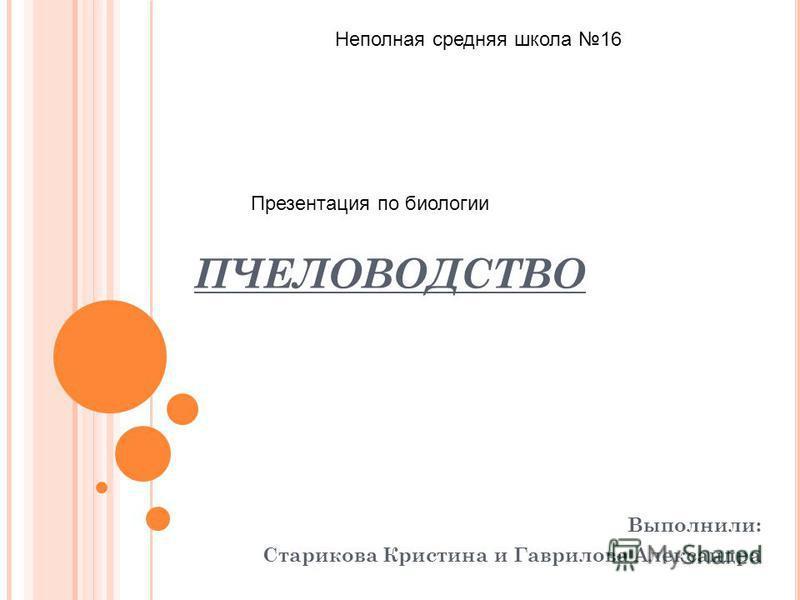 ПЧЕЛОВОДСТВО Выполнили: Старикова Кристина и Гаврилова Александра Неполная средняя школа 16 Презентация по биологии