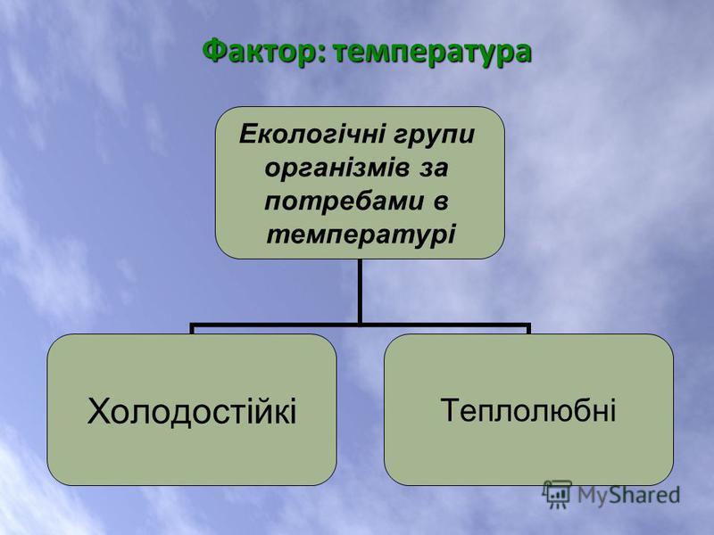 Екологічні групи організмів за потребами в температурі ХолодостійкіТеплолюбні Фактор: температура Фактор: температура