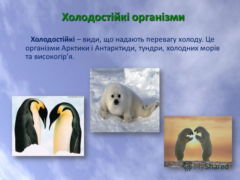 Холодостійкі – види, що надають перевагу холоду. Це організми Арктики і Антарктиди, тундри, холодних морів та високогіря. Холодостійкі організми Холодостійкі організми