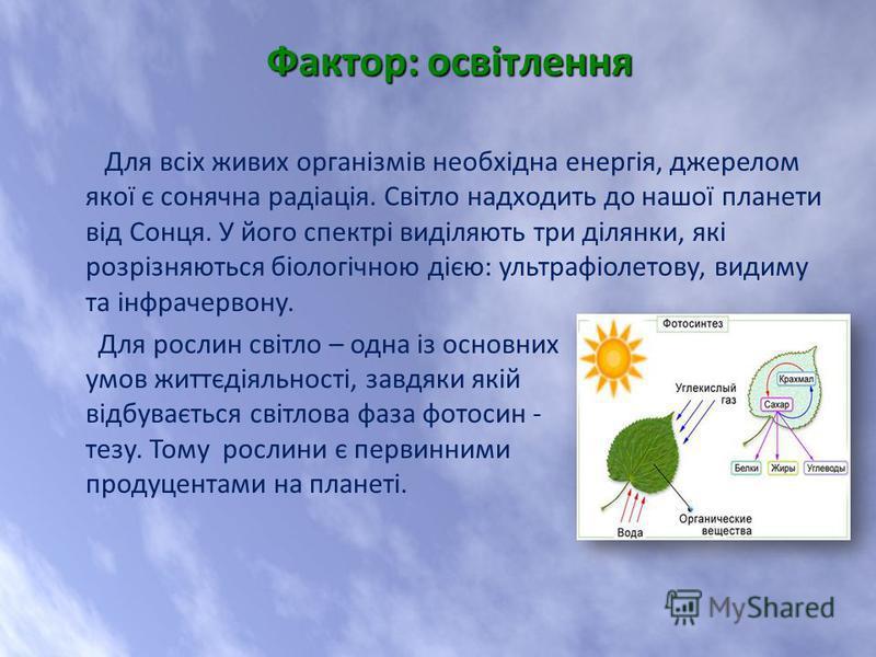 Для всіх живих організмів необхідна енергія, джерелом якої є сонячна радіація. Світло надходить до нашої планети від Сонця. У його спектрі виділяють три ділянки, які розрізняються біологічною дією: ультрафіолетову, видиму та інфрачервону. Для рослин