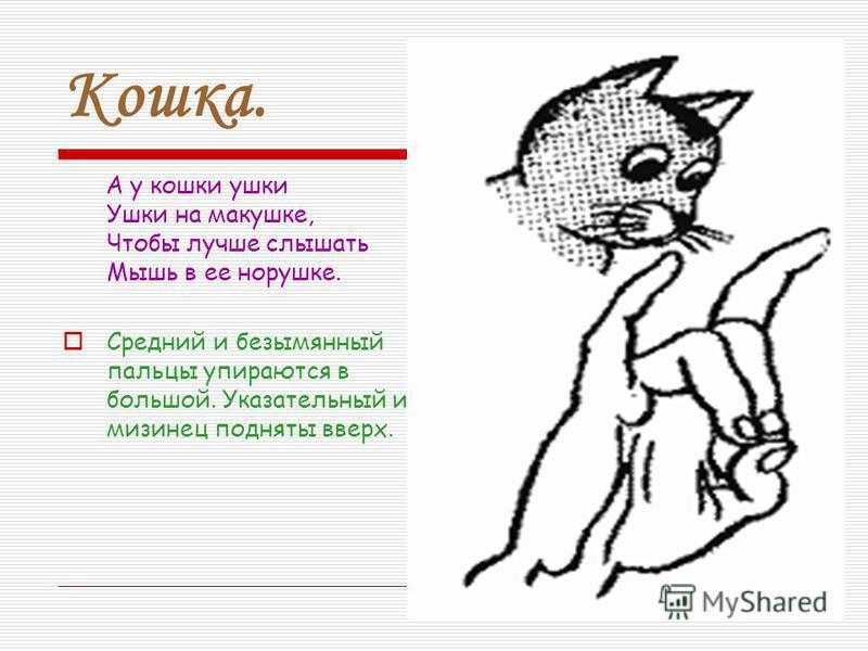 Кошка. А у кошки ушки Ушки на макушке, Чтобы лучше слышать Мышь в ее норушке. Средний и безымянный пальцы упираются в большой. Указательный и мизинец подняты вверх.