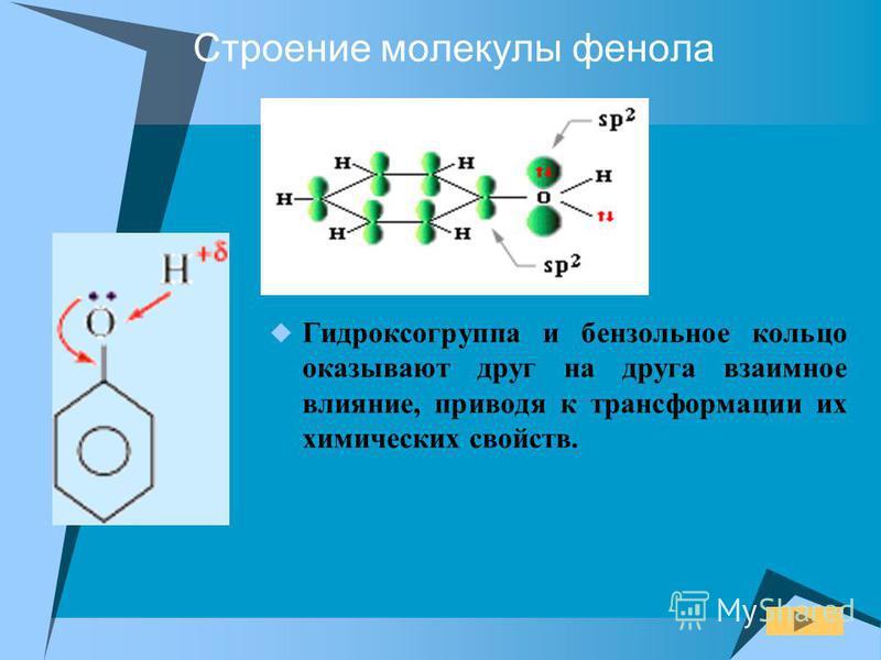 Строение молекулы фенола Гидроксогруппа и бензольное кольцо оказывают друг на друга взаимное влияние, приводя к трансформации их химических свойств.