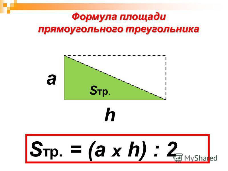 S пр. S тр. S тр. = S пр. : 2