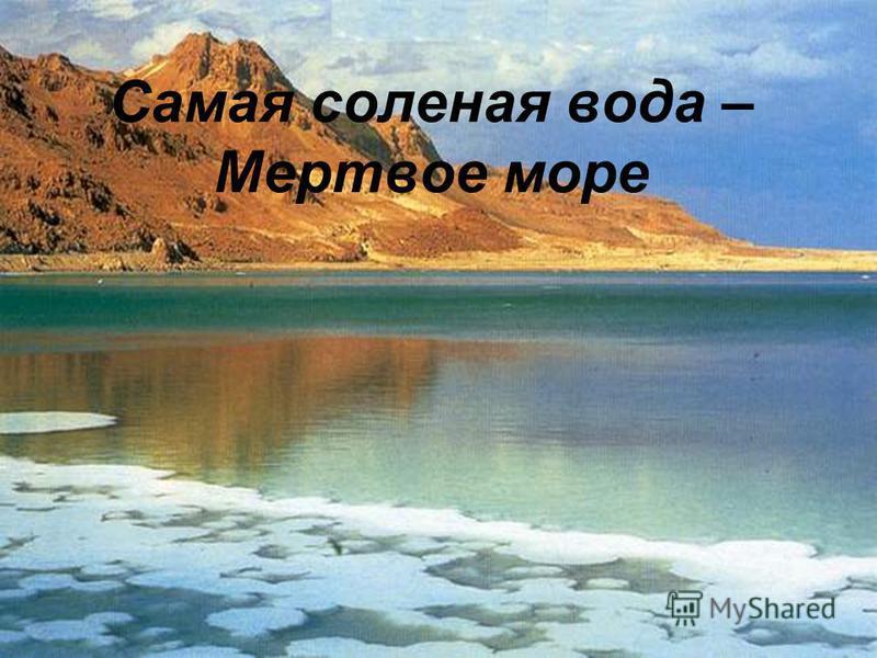 Самая соленая вода – Мертвое море