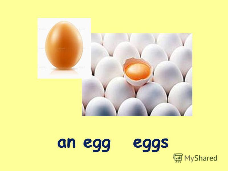 an egg eggs