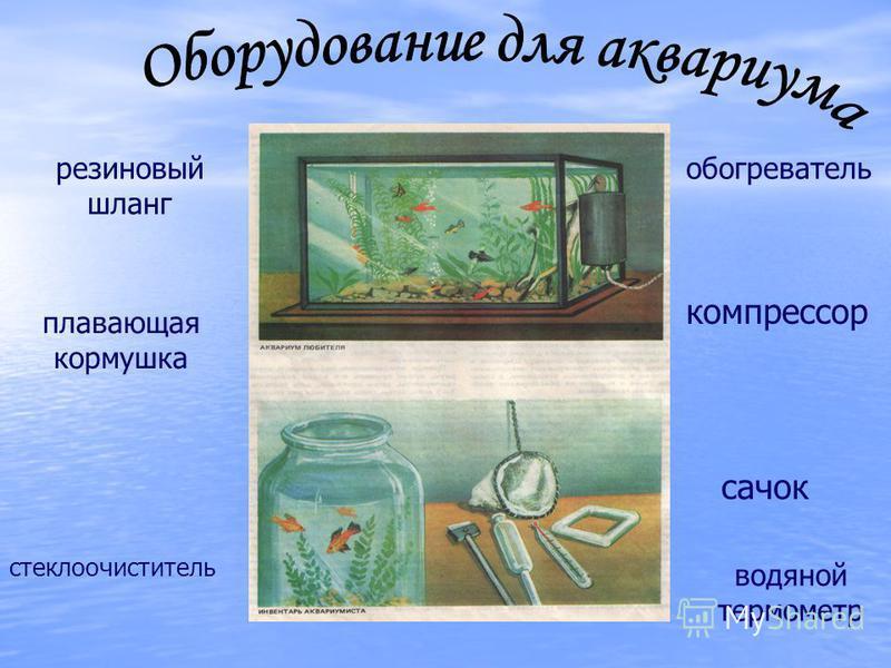 сачок резиновый шланг стеклоочиститель обогреватель водяной термометр плавающая кормушка компрессор