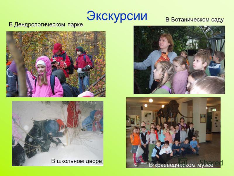 Экскурсии В Ботаническом саду В школьном дворе В Дендрологическом парке В краеведческом музее