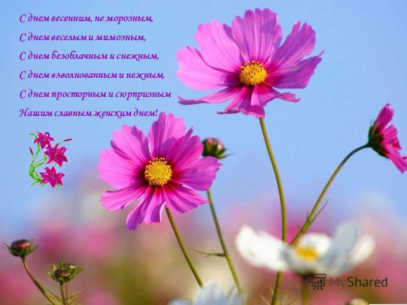 С днем весенним, не морозным, С днем веселым и мимозным, С днем безоблачным и снежным, С днем взволнованным и нежным, С днем просторным и сюрпризным Нашим славным женским днем!