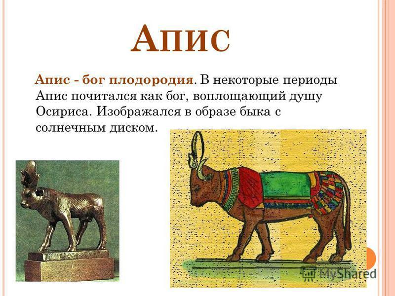 А ПИС Апис - бог плодородия. В некоторые периоды Апис почитался как бог, воплощающий душу Осириса. Изображался в образе быка с солнечным диском.